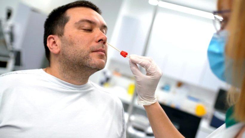 Wie Lange Dauert Ein Großes Blutbild
