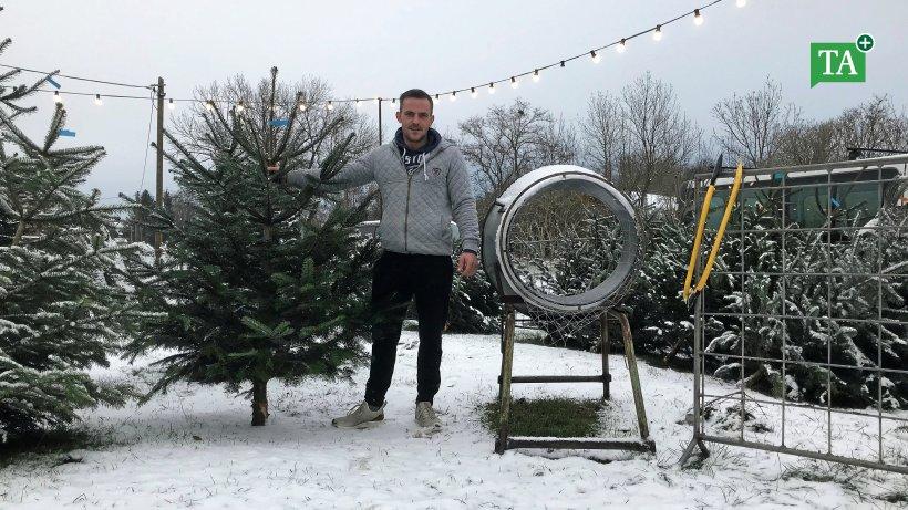 Weihnachtsbaumverkauf im Zirkus-Winterquartier
